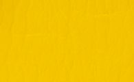 gelb-bisanz