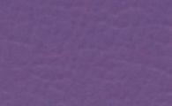 violett-bisanz