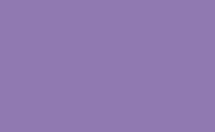 violett-pud-bisanz